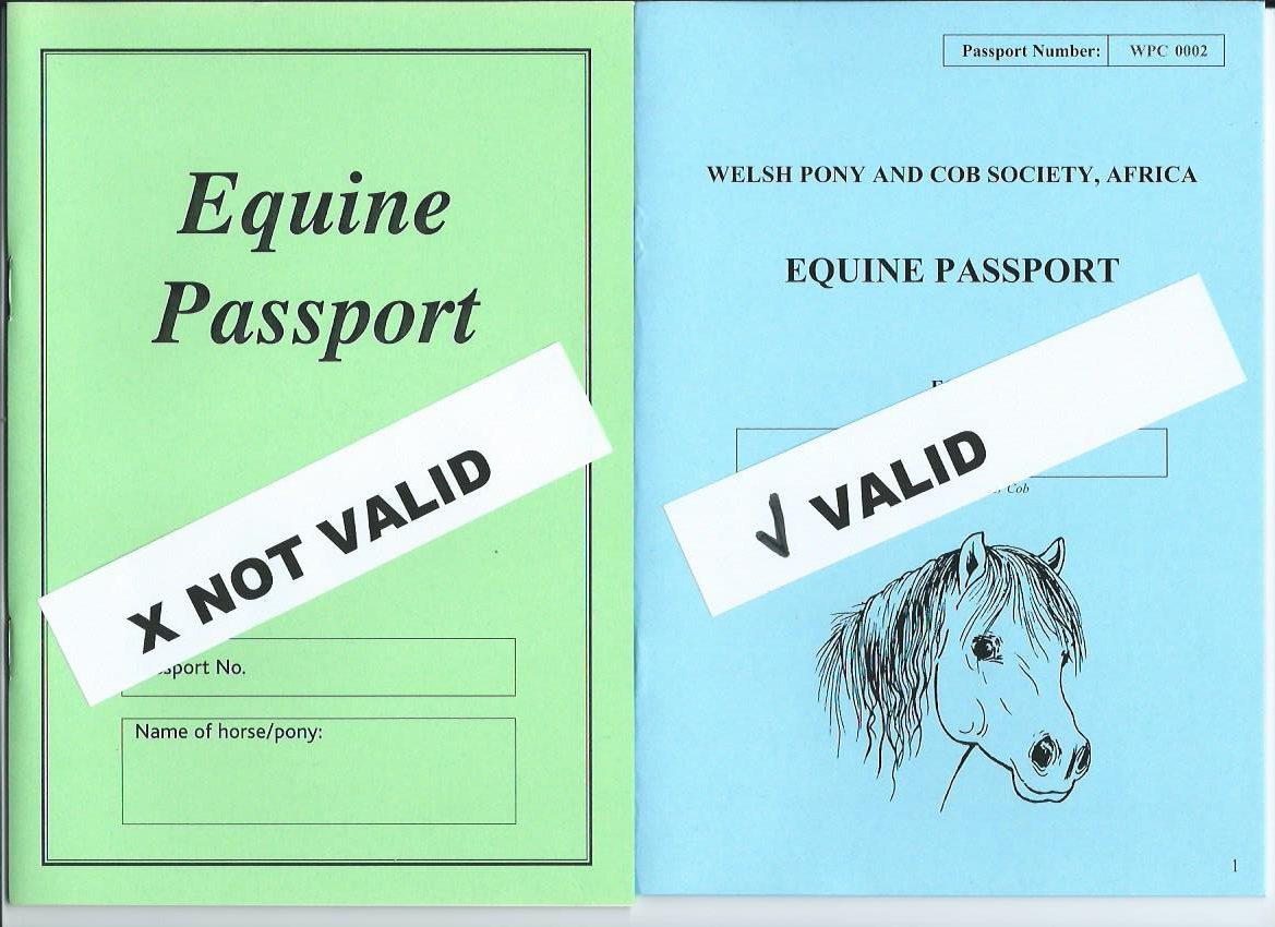 PASSPORTS VALIDITY 001